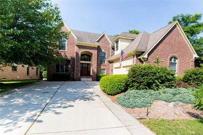 Northville Single Family Home For Sale: 18130 Cascade Drive