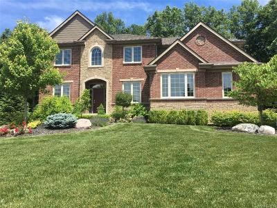 City Of The Vlg Of Clarkston, Clarkston, Independence Twp Single Family Home For Sale: 5649 Golf Pointe Drive Drive