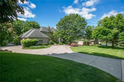 Farmington Hills Single Family Home For Sale: 34231 Ramble Hills Drive