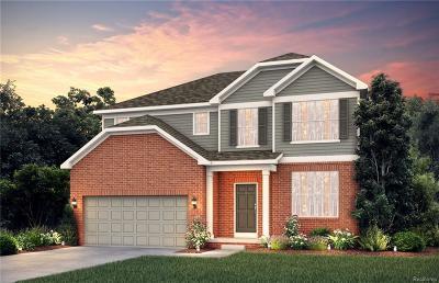 Ann Arbor Single Family Home For Sale: 724 Groveland Circle