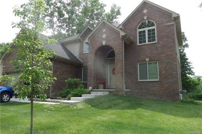 Shelby Twp Single Family Home For Sale: 53401 Luann Drive