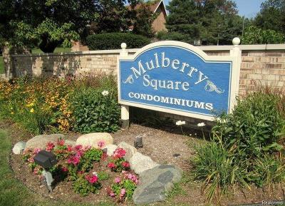 Bloomfield Twp Condo/Townhouse For Sale: 2442 Mulberry Square #40