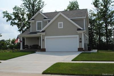Monroe County Single Family Home For Sale: 9106 Birch Pointe Drive