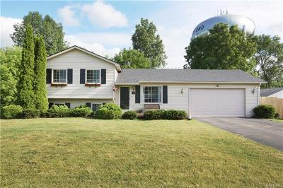 Waterford Twp MI Single Family Home For Sale: $164,000
