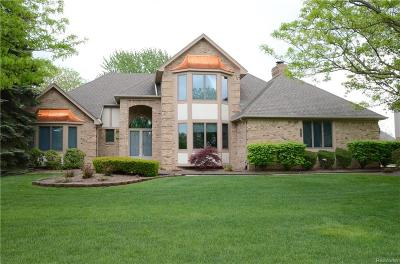 Novi MI Single Family Home For Sale: $514,900