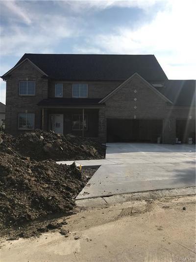 Clinton Twp Single Family Home For Sale: 41860 Antoinette Court