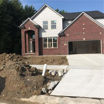 Clinton Twp Single Family Home For Sale: 41855 Antoinette Court
