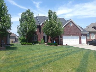 Clinton Twp Single Family Home For Sale: 18413 Swan Court