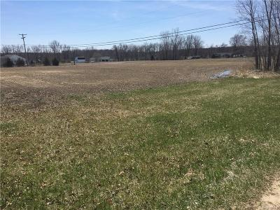Holly Twp Residential Lots & Land For Sale: N Holly Road