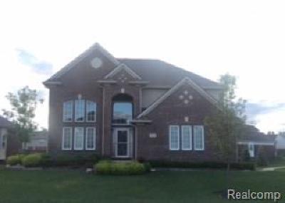 Lyon Twp Single Family Home For Sale: 53702 Edgewood Drive