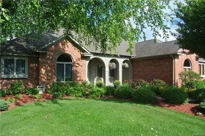 Salem Twp MI Single Family Home For Sale: $459,900