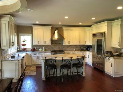 Clinton Twp Single Family Home For Sale: 19915 Emerald Lane N