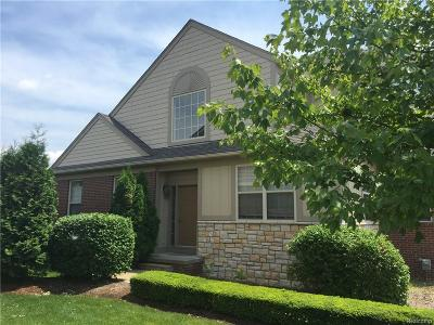 Rochester Hills Condo/Townhouse For Sale: 3841 Winding Brook
