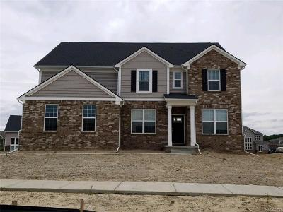 Lyon Twp Single Family Home For Sale: 24504 Scenic Drive