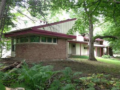 Farmington Hills Single Family Home For Sale: 36660 Howard Road