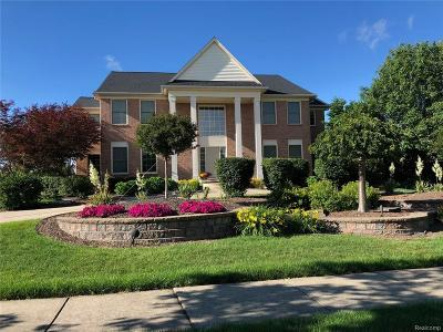 Canton, Canton Twp Single Family Home For Sale: 49705 Flushing Avenue