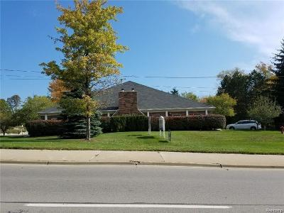 Clarkston, Independence Twp, Springfield Twp Commercial For Sale: 6060 Dixie Highway