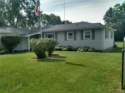 Van Buren, Van Buren Twp Single Family Home For Sale: 42871 Riggs Road