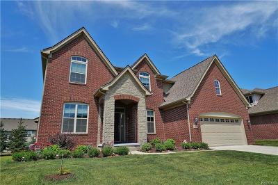 Novi Single Family Home For Sale: 27629 Amadora Circle