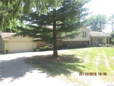City Of The Vlg Of Clarkston Single Family Home For Sale: 8004 W Perry Lake Road W