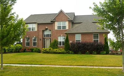Lyon Twp Single Family Home For Sale: 51959 Copperwood Drive N