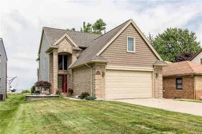 Harrison Twp Single Family Home For Sale: 38888 Lakeshore Drive