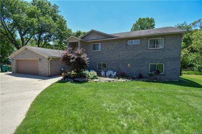 Novi Single Family Home For Sale: 111 Austin Drive