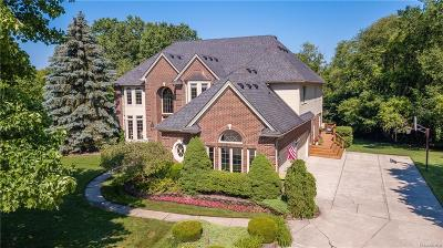 Novi Single Family Home For Sale: 41836 Hempshire Street