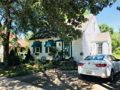 Ortonville Single Family Home For Sale: 198 N Church Street