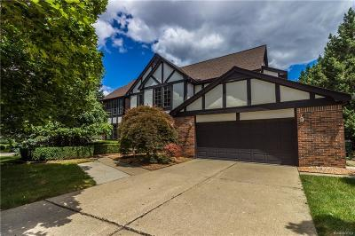 Rochester Hills Single Family Home For Sale: 740 Timberline Drive