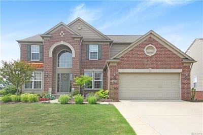 Lyon Twp Single Family Home For Sale: 58763 Peters Barn Drive