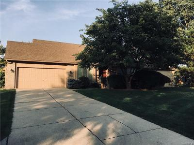 Troy Condo/Townhouse For Sale: 5922 Whitfield Drive