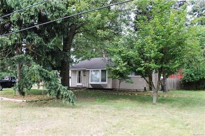 Southfield Single Family Home For Sale: 23175 Plum Hollow Street