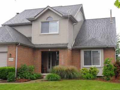Single Family Home For Sale: 42294 Oakland Drive