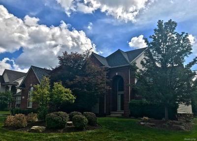 Novi Single Family Home For Sale: 30416 Norwich Drive