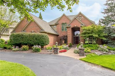 Highland Twp MI Single Family Home For Sale: $950,000