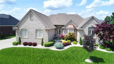 Shelby Twp MI Single Family Home For Sale: $674,900