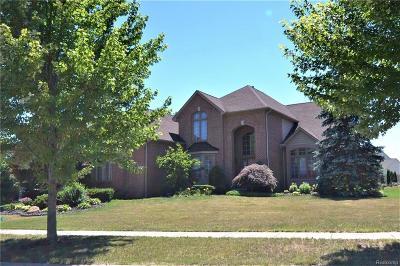 Novi Single Family Home For Sale: 24101 Devonshire Drive