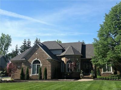 Shelby Twp Single Family Home For Sale: 2418 Stanton Court