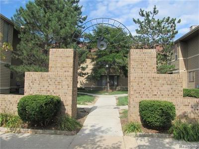 Ann Arbor Rental For Rent: 325 Briarcrest #170
