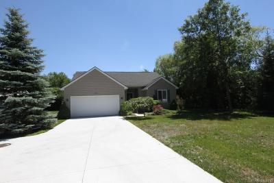 Auburn Hills Single Family Home For Sale: 3112 N Squirrel Road