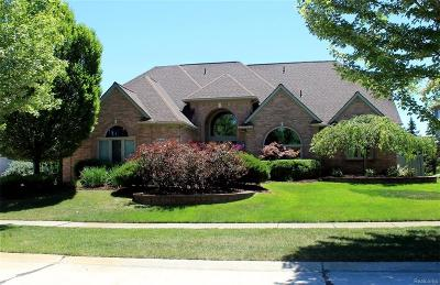Novi Single Family Home For Sale: 25841 Cheyenne