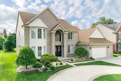 Troy Single Family Home For Sale: 4270 Vassar Drive