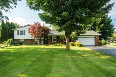 Commerce Twp Single Family Home For Sale: 3676 Sandbar Drive