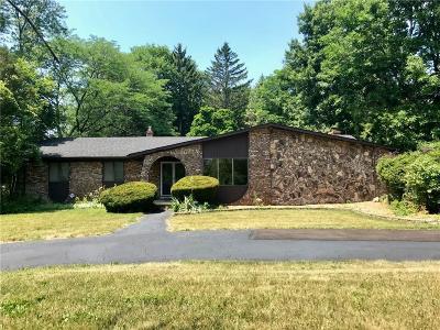 Farmington Hills Single Family Home For Sale: 20937 Halsted