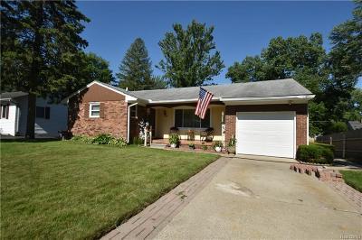 Farmington Hills Single Family Home For Sale: 23090 Colgate
