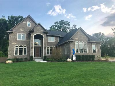 Novi Single Family Home For Sale: 47571 Alpine Drive