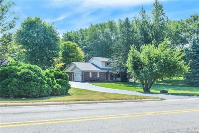 Lyon Twp Single Family Home For Sale: 30620 Martindale Road