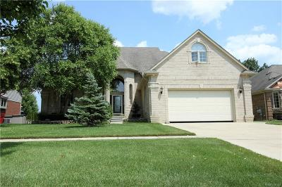 Macomb Twp Single Family Home For Sale: 53926 Carnation Drive