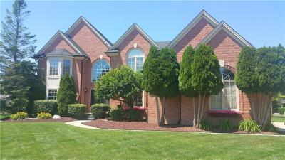 Shelby Twp Single Family Home For Sale: 14987 Cranbrook Court